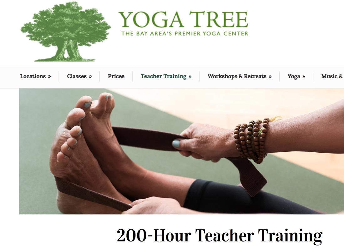 Bien-aimé Teacher Training - Matt Champoux - YOGA∞ ZN19